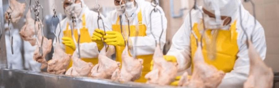 HACCP Eğitimi