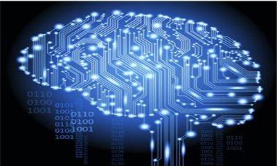 Data Nasıl Bilgiye Dönüştürülür ?